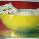 TOO SWEET!! WHITE PERSIAN CAT IN POTTERY BOWL-JACK MURRAY ARTWORK