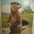 THE WOODCHUCK-Vintage Illustration Cabin Artwork Theme