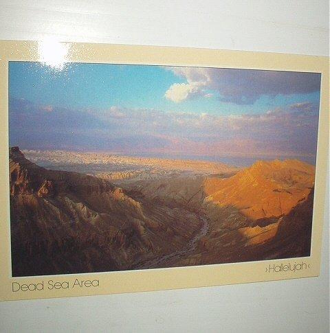 Unused Vintage Postcard-Dead Sea Area-Printed in Israel