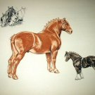 Belgian and Shire Horses-Edwin Megargee Original Vintage Lithograph Print