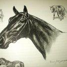 The Race Horse-Edwin Megargee Original Vintage Lithograph Print