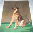German Shepard Dog-Diana Thorne-Vintage Lithograph-Backside is a Husky Dog