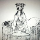 Vintage Lithograph-Sweet Airedale Dog in Wicker Bed,Backside German Shepard Dogs