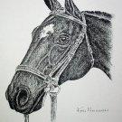Horse Portrait Facing Left Vintage Lithograph Print Ken Nessen a Western Artist