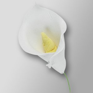 25 x Medium White Calla Lily Sugar Gum Paste Flower Wedding Cake Display Toppers