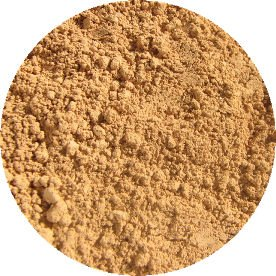 Natural Mineral Makeup Powder Foundation - MEDIUM CHAMPAGNE - 5g Sample Jar