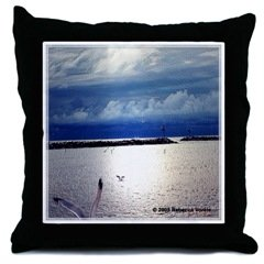 New Throw Pillow with water Art