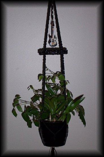 Guitar & Onyx Plant Hanger