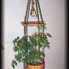 Acoustic Guitar and Wood Plant Hanger