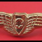 IAF miniature pilot wings IDF Israel army pin star of David