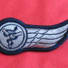 Obsolete Israel Airborne doctor medic cloth WINGS IDF