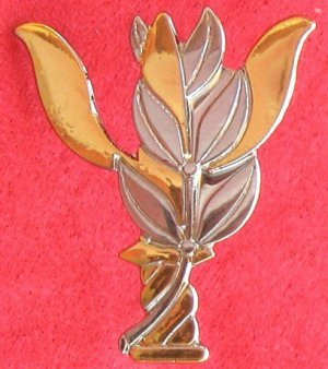 IDF Psychology officer (kaban) badge / pin Israel army