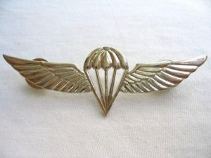 Israel Israeli army IDF paratrooper wings badge