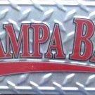 LP-289 Tampa Bay License Plate