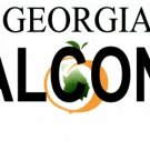 LP-2041 Georgia State Background License Plates - Falcons