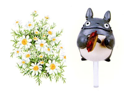 Ghibli - Totoro - Planter Pot & Pick & Seed & Soil Set - Chamomile (new)