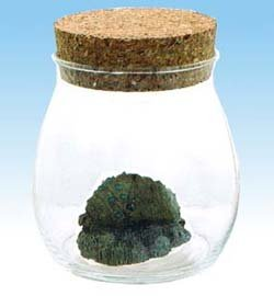 Figure in Aqua Glass Pot - Cork Cap - Ohm - Nausicaa - Ghibli - 2009 (new)