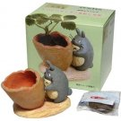 1 left - Mini Planter Pot & Seed & Soil Set - Strawberry - Totoro - Ghibli - out of production (new)