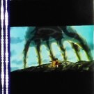 1 left - Movie Film #4 - 6 Frames - Didarabocchi's Hand & Head Case - Mononoke (real film)