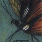 ACEO Butterfly wildlife magnet