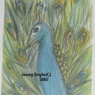ACEO Peacock wildlife art magnet
