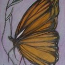 aceo butterfly wildlife art magnet