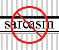 6185 No Sarcasm Needlepoint Canvas