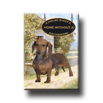 DACHSHUND House Is Not A Home FRIDGE MAGNET No 1 DOXIE