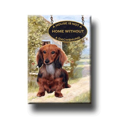 DACHSHUND House Is Not A Home FRIDGE MAGNET No 4 DOXIE