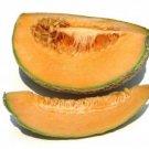 Cucumber/Cantalope  (8oz Bathsalt