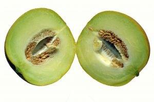 Cucumber/Melon  (body l. 4oz)