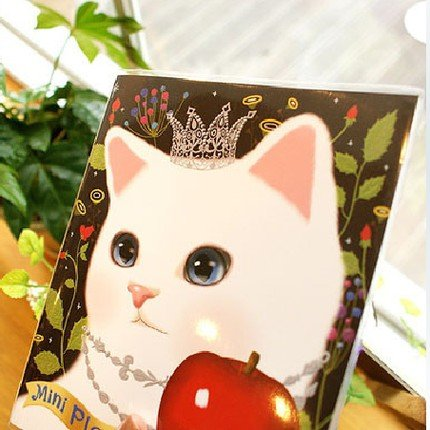 Sweet Jetoy Cat Square Slim Any Year Monthly Planner Diary Notebook - Princess