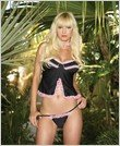 Babydoll-Sexy Wear Lingerie LA-8061 $27.50