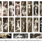 Nude Ladies Microslide Digital Collage sheet 1