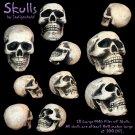 Skull PNG Pack
