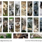 Love of Wolves Digital Microslide Collage Sheet PDF