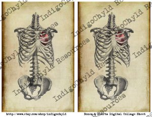 Bones and Hearts Digital Collage Sheet JPG