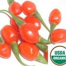 1000+ Himalayan USDA Organic Goji Berry Seeds