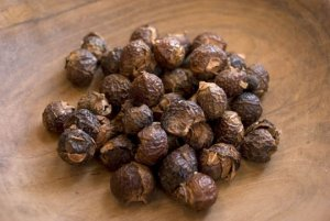 Organic Soapnuts From India (Soap Nuts) Natural Soap & Laundry Detergent 250grams (.55LB)
