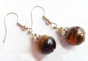 Silver Tiger's Eye Earrings