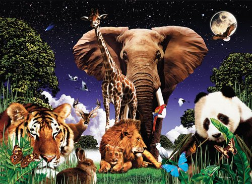 Animal Treasures - 1,500 piece SunsOut puzzle - for Ages 12+