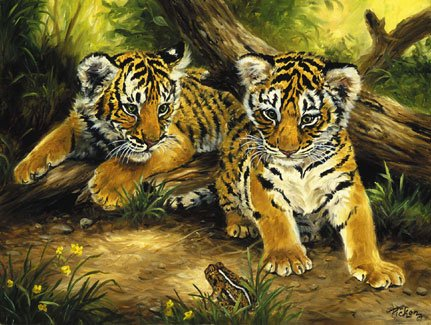 Tiger Cubs - 300 piece SunsOut puzzle - for Ages 8+