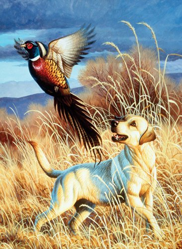 Dog & Pheasant - 500 Large Piece SunsOut puzzle - for Ages 12+