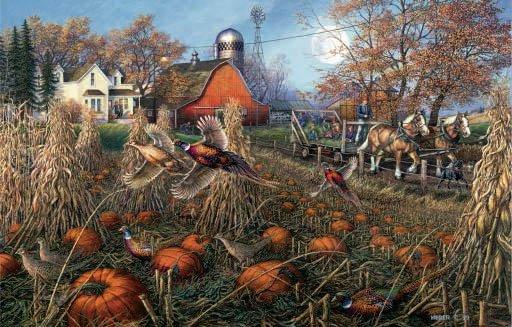 Pheasant Pumpkin Patch - 1,000 piece SunsOut puzzle - for Ages 12+