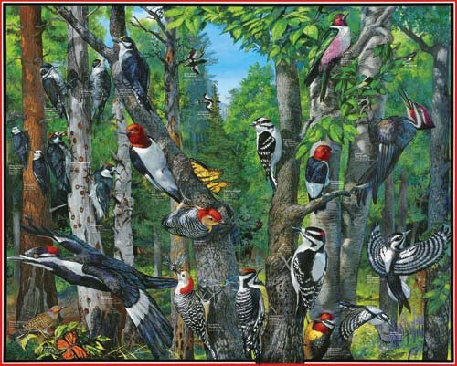 Woodpeckers - 1,000 piece White Mountain puzzle - for Ages 12+