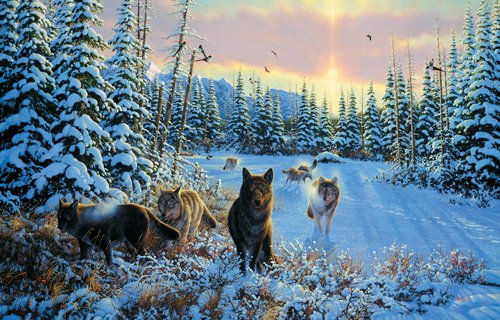 Hunters Moon - Wolves - 1,000 piece SunsOut puzzle - for Ages 12+