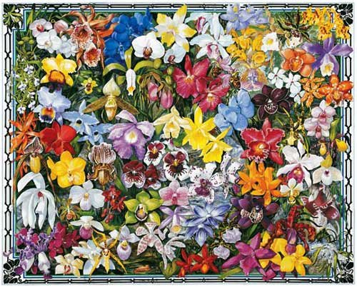 Orchids  - 1,000 piece White Mountain puzzle - for Ages 12+