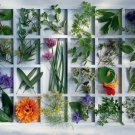 Kitchen Herbs - 1,500 piece Ravensburger puzzle - for Ages 12+