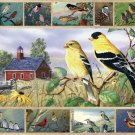 Songbirds  - 1,000 piece White Mountain puzzle - for Ages 12+