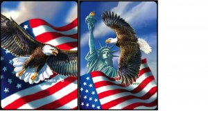 Symbols of Freedom - Double Deck Bridge Playing Cards - NEW